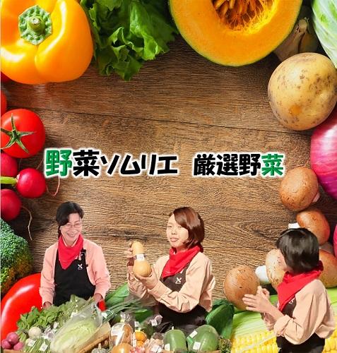 野菜ソムリエが選ぶ自慢の旬セットL