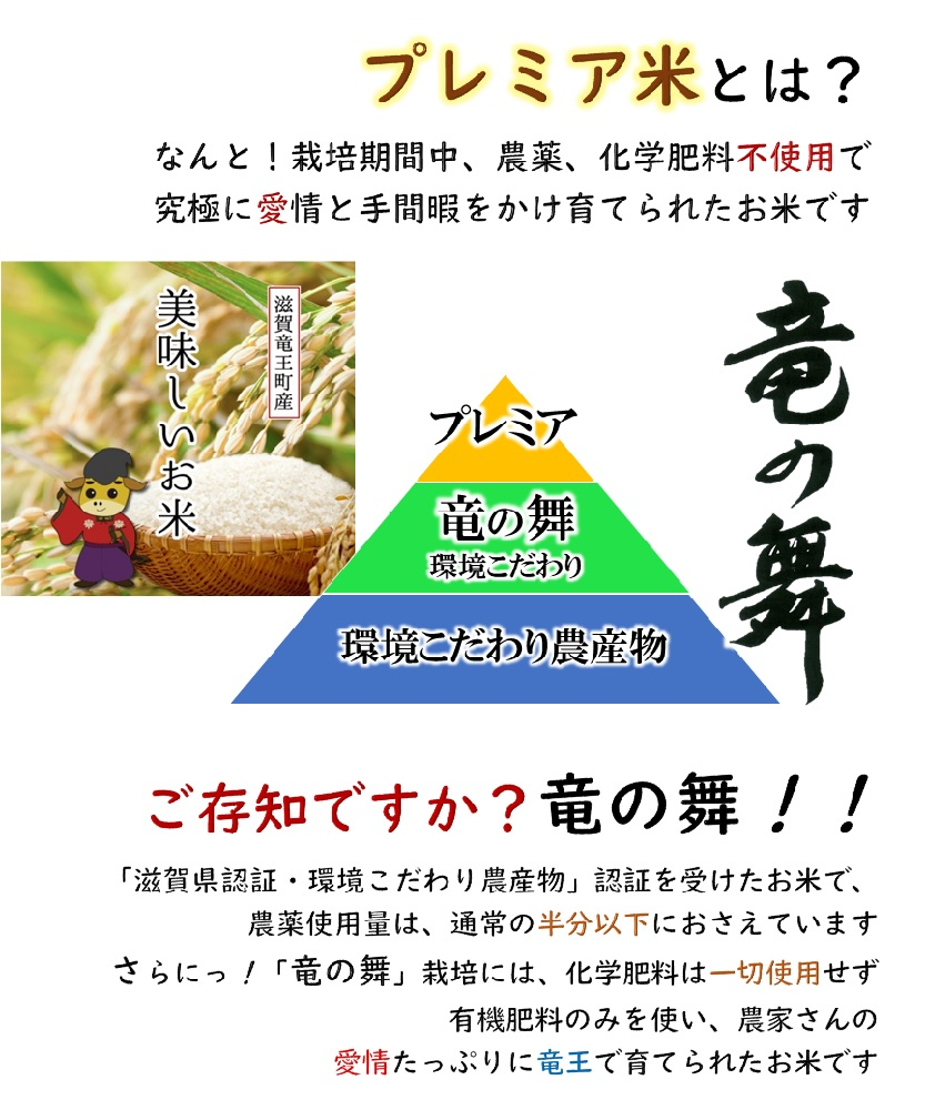 玄米5kg 2020年産 竜の舞  秋の詩
