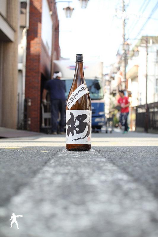 春酒/さつま寿「桜」黒麹 1800ml