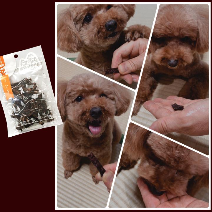 【ペットフード】犬 おやつ 国産 鹿肉 ドライミンチ 25g×3袋 クリックポスト(代引き不可) 無添加 ドライフード ジビエ 鹿 京丹波自然工房