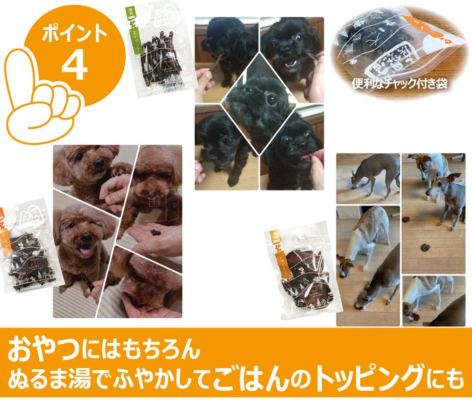 【ペットフード】犬 おやつ 国産 鹿肉 ドライジャーキー 25g×3 クリックポスト(代引き不可) 無添加 ドライフード ジビエ 鹿 京丹波自然工房