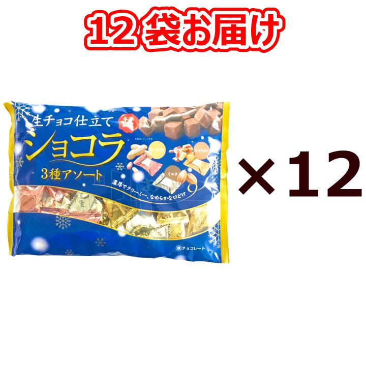 本州送料無料 生チョコ仕立てショコラ 3種アソート 160g×12袋 個包装 ミルク キャラメル ピーナッツ 賞味期限2021年8月