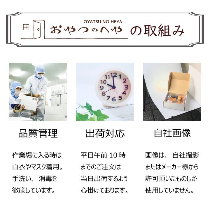 フジバンビ 黒糖しょうが カシューナッツ 45g×6袋 クリックポスト(代引不可) ナッツ