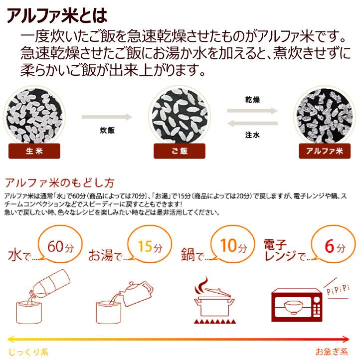 尾西食品 アルファ米 五目ごはん 10個セット スプーン付 長期保存可能 防災 非常食 保存食 携帯食