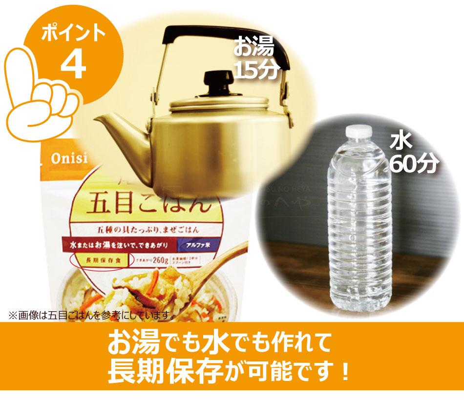 尾西食品 アルファ米 ドライカレー 10個セット スプーン付 長期保存可能 防災 非常食 保存食 携帯食