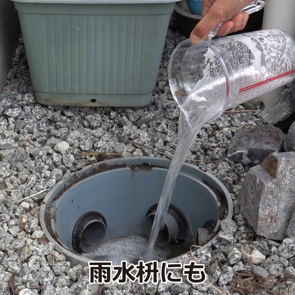 チョウバエバスター 25g×10袋 チョウバエ駆除+排水口の洗浄除菌