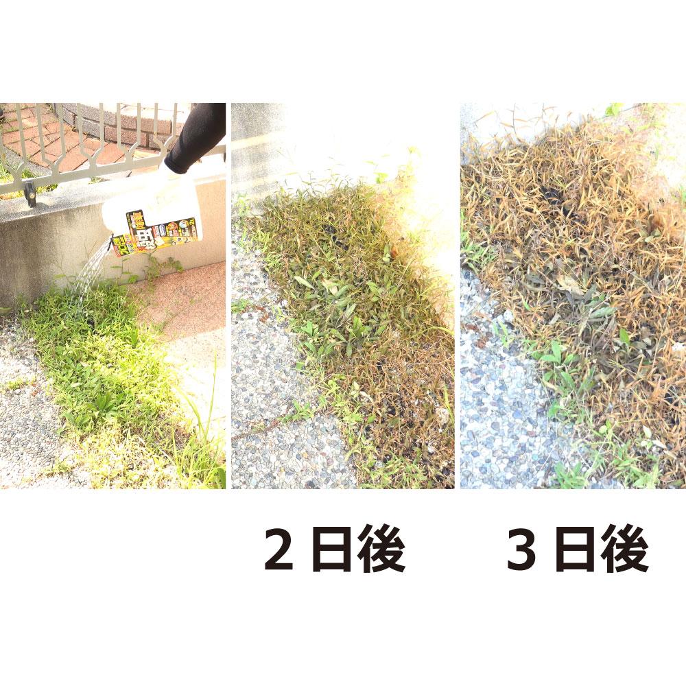 ムシクリン 防虫除草シャワー 2L 除草剤 殺虫 虫よけ
