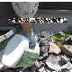 【お買い得3本セット】 ムシロック粉剤 1500g×3本 業務用虫よけパウダー