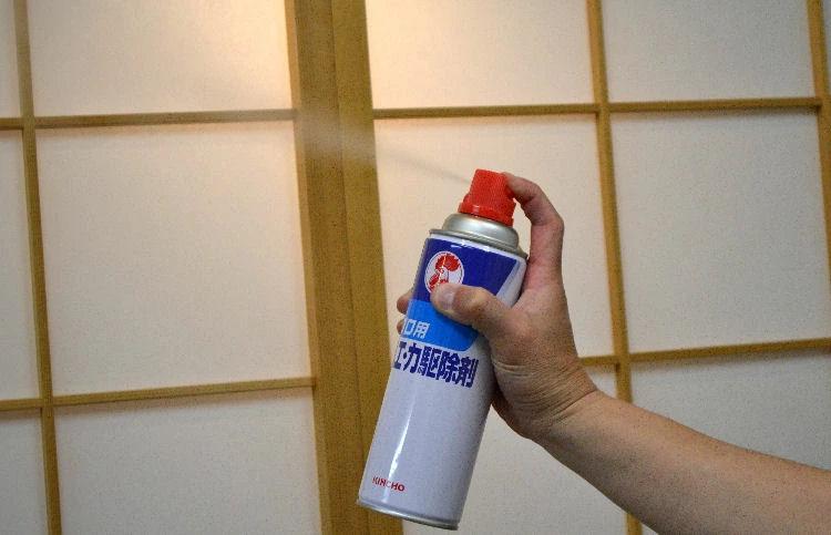 キンチョールD2 480ml 【防除用医薬部外品】 殺虫剤 プロ用ハエ 蚊退治用スプレー