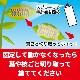 大日本除虫菊 チャドクガ毒針毛固着剤 180ml×30本/ケース チャドクガ防除剤