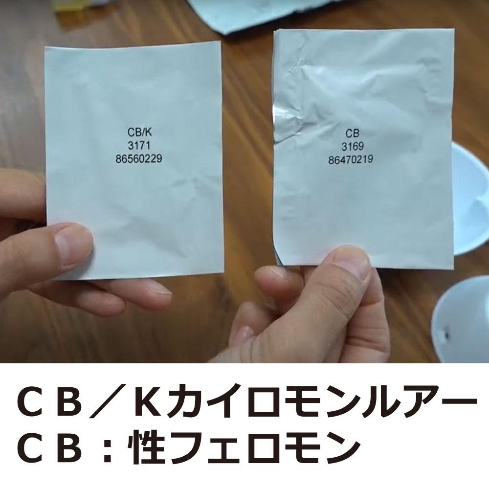 タバコシバンムシ調査用 ドームトラップ タバコ