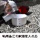ムカデ駆除 ヤスデ駆除 サイベーレ0.5SC 900ml×12本 【送料無料】 液体 噴霧 殺虫剤