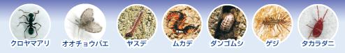 チョウバエ コバエ対策 業務用 不快害虫用殺虫剤 バーミレス乳剤 18L缶 ゴミ処理場 工場 倉庫用 [レナトップ乳剤の普通物タイプ] [送料無料]