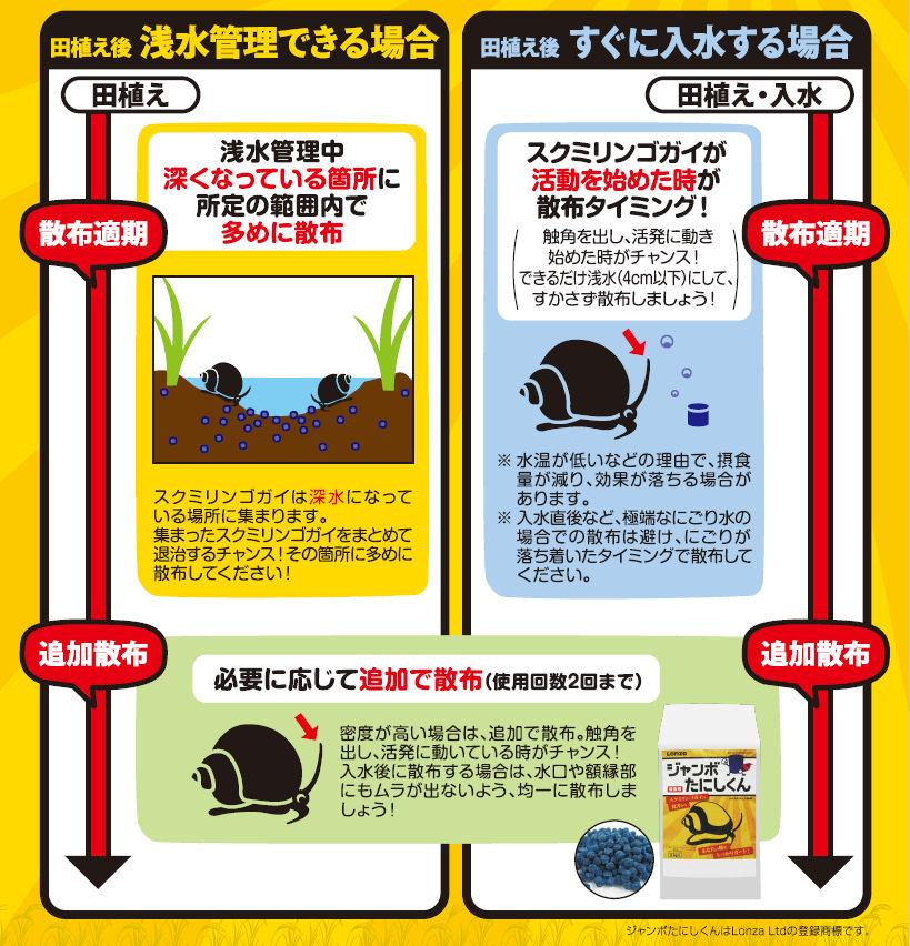 ジャンボタニシ防除剤 ジャンボたにしくん 2kg×3袋 農薬 水稲用 殺虫剤 メタアルデヒド粒剤 稲 被害 食害防止