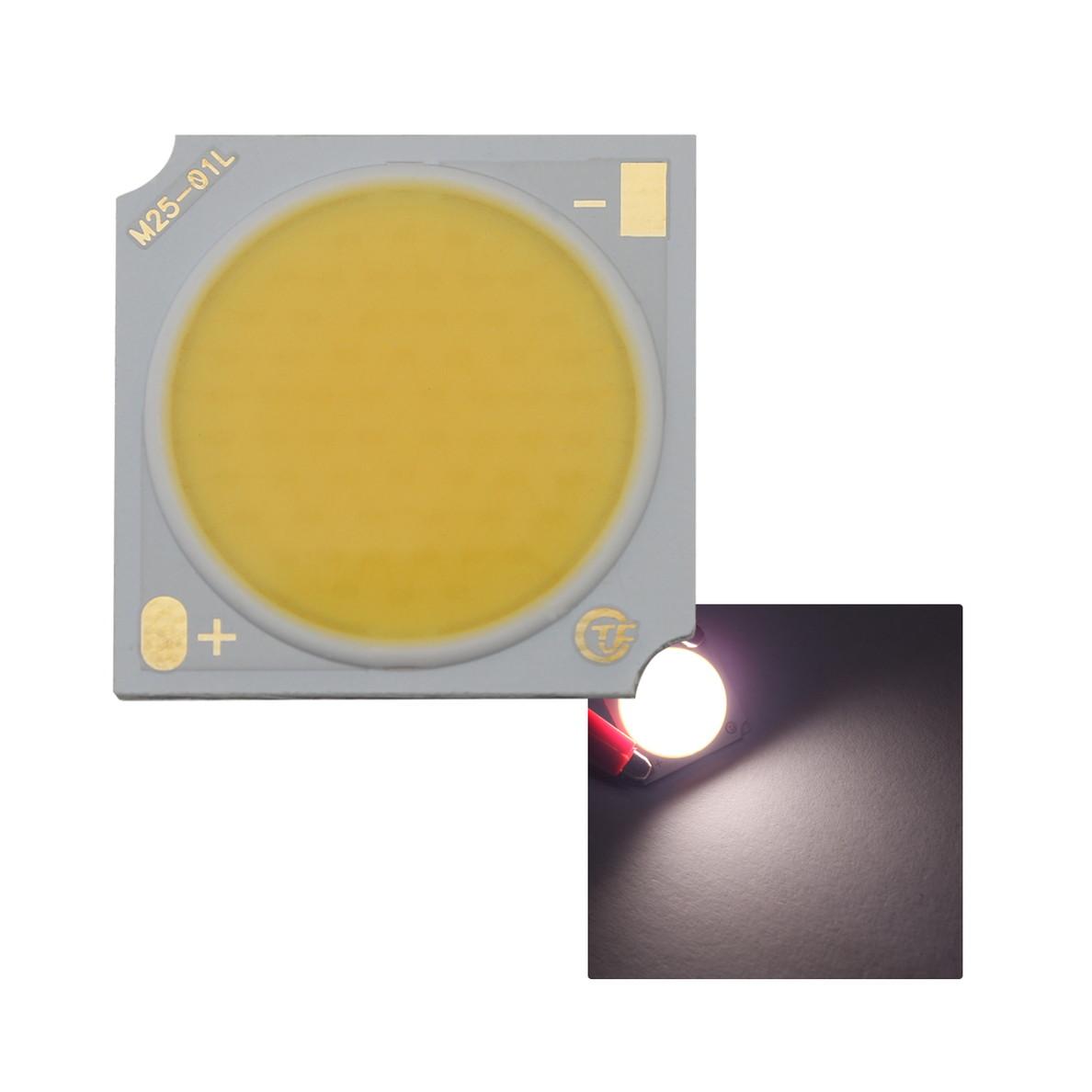 8584(1個) COB ショーケース用 LED (野菜・フルーツ向け) 1919 (30W) 4800-5300K 110-120LM/W 30-34V 960mA 90Ra