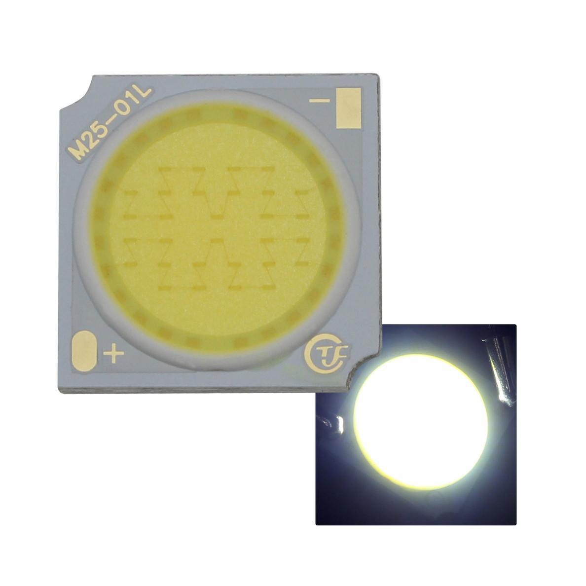 8442(1個) COB 1919 15W LEDモジュール 白色 45-51V 320mA 6000-6500K 110-120lm 80Ra