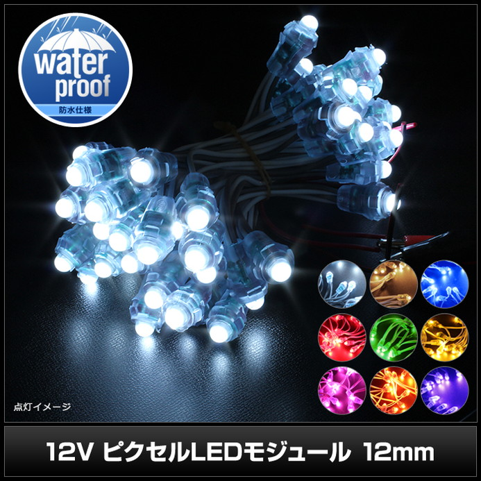 (50連×100set) 12V ピクセルLEDモジュール 12mm