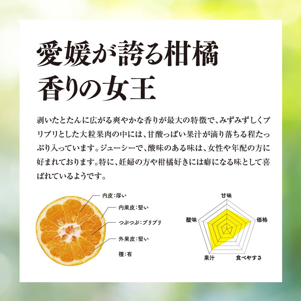 そら伊予柑【農家直送/訳あり】4kg 送料無料