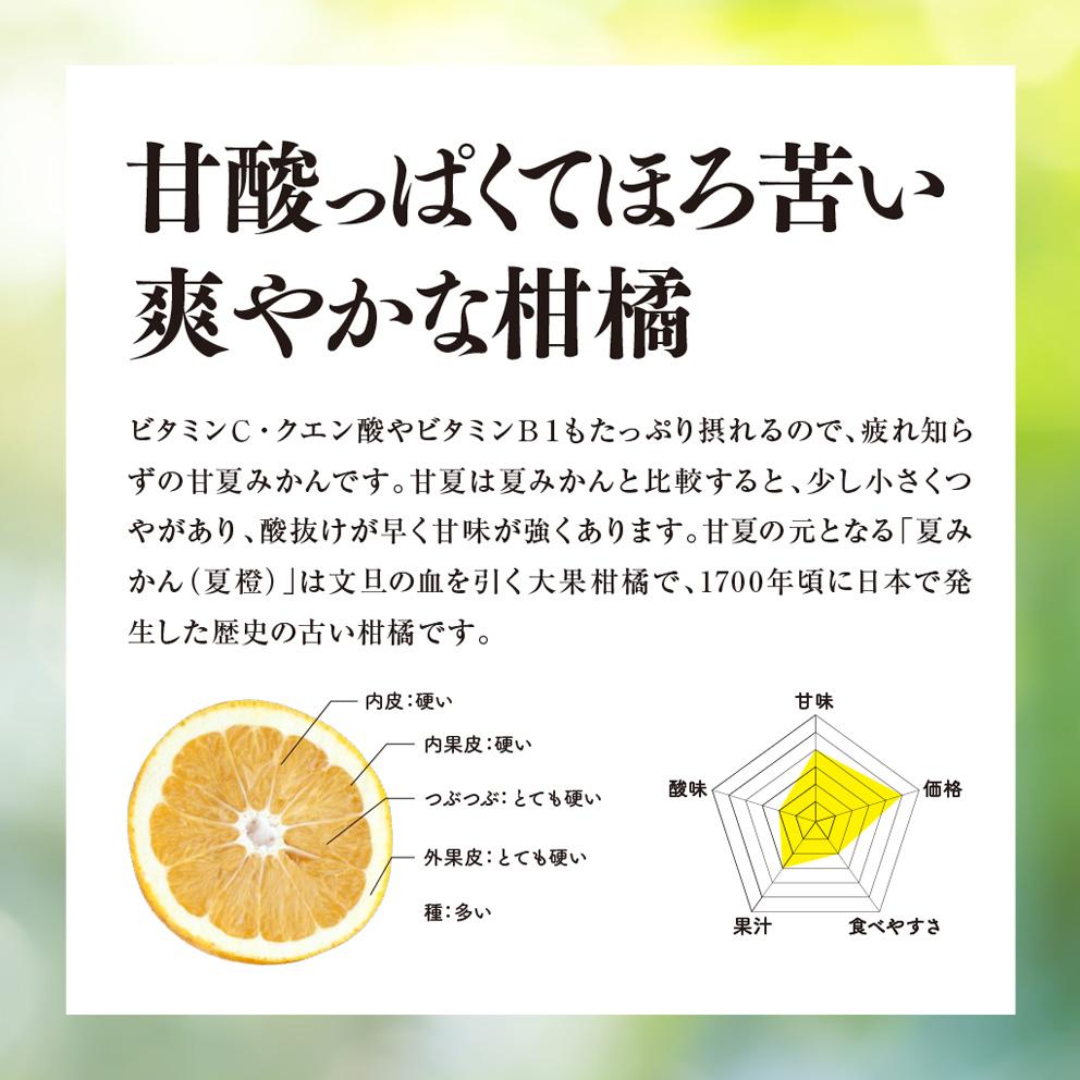 そら甘夏【農家直送/訳あり】4kg 送料無料