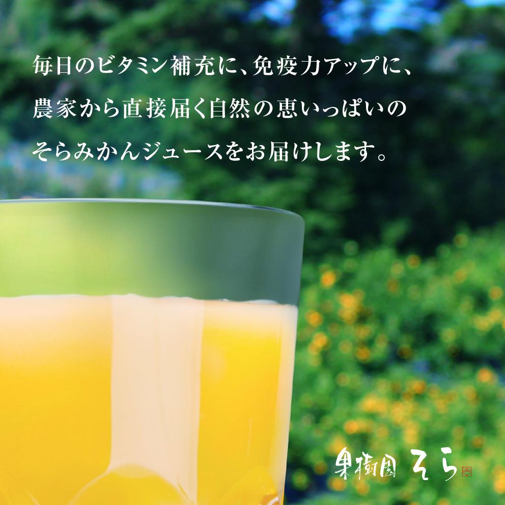 そらのみかんジュース3本セット【農家直送/甘絞り】