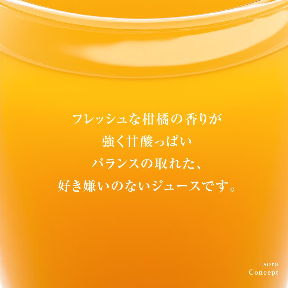 そらのなつみジュース3本セット【農家直送/甘絞り】