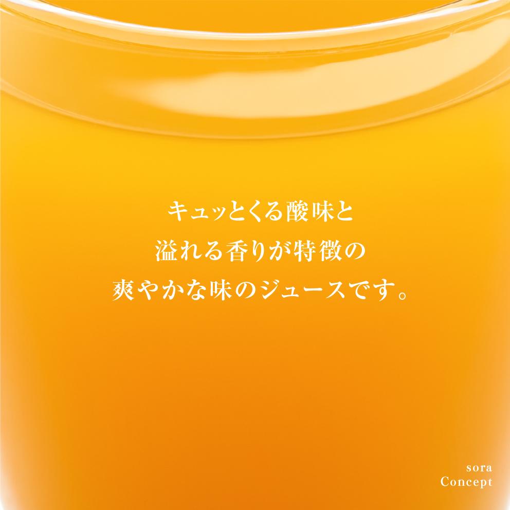 そらのきよみジュース3本セット【農家直送/甘絞り】