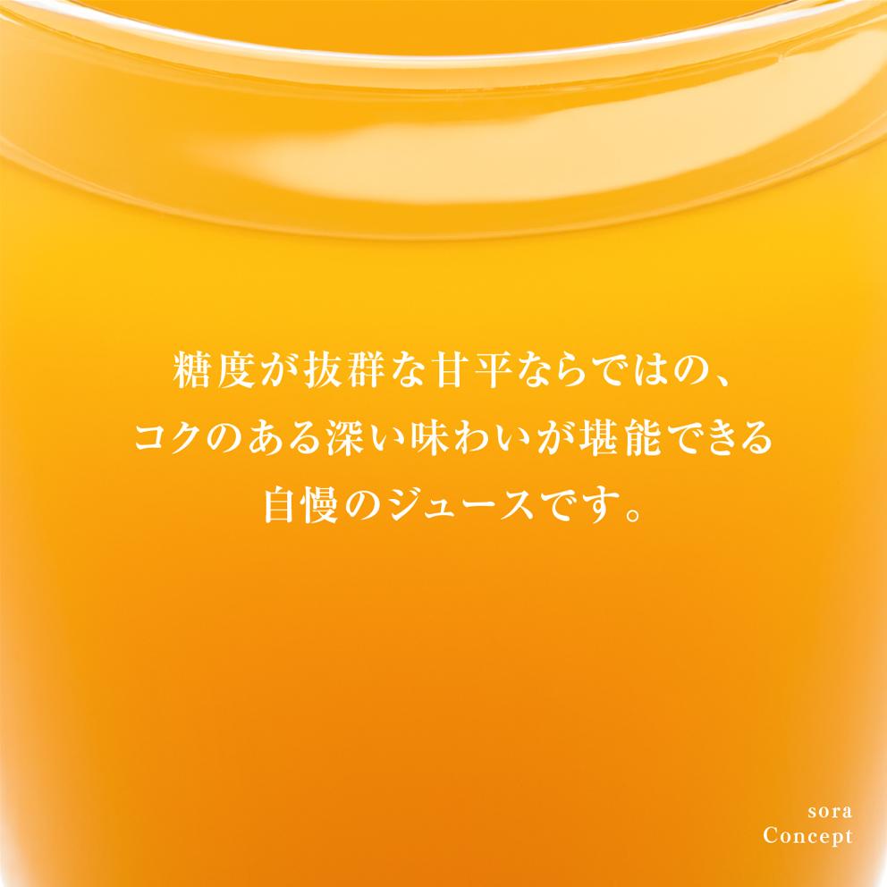 そらプレミアム甘平ジュース3本セット【特級畑/愛媛受賞ジュース】