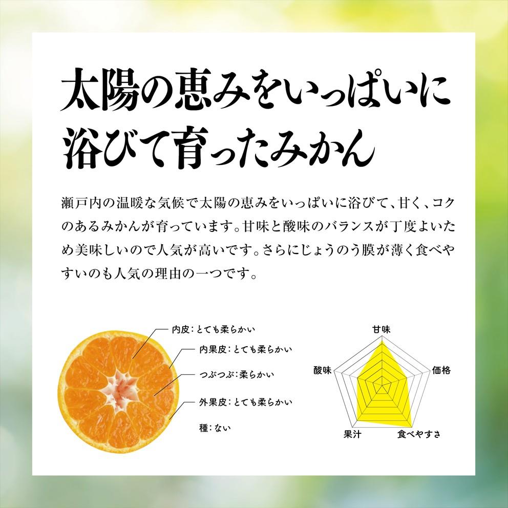 みかん 愛媛産/早生/訳あり10kg【ご予約11/1〜順次発送】