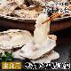 広島牡蠣の老舗! 殻付き牡蠣10個[生食用]