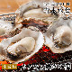 旅サラダ で絶賛 紹介広島牡蠣老舗の味! カンカン焼き 殻付き牡蠣25個[生食可]