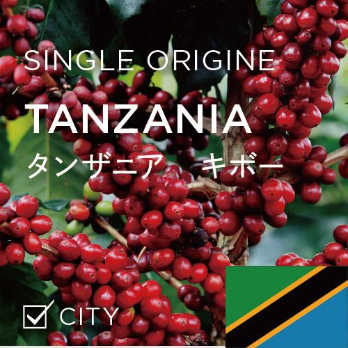 タンザニア キボー