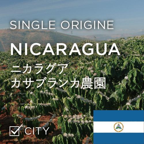 ニカラグア カサブランカ農園