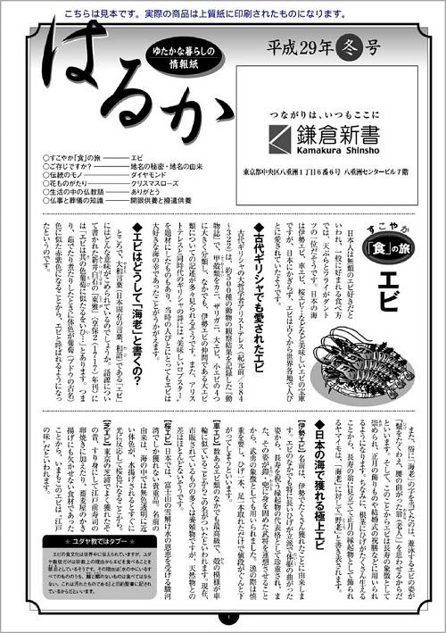 【無料サンプル】オリジナル会報「はるか」
