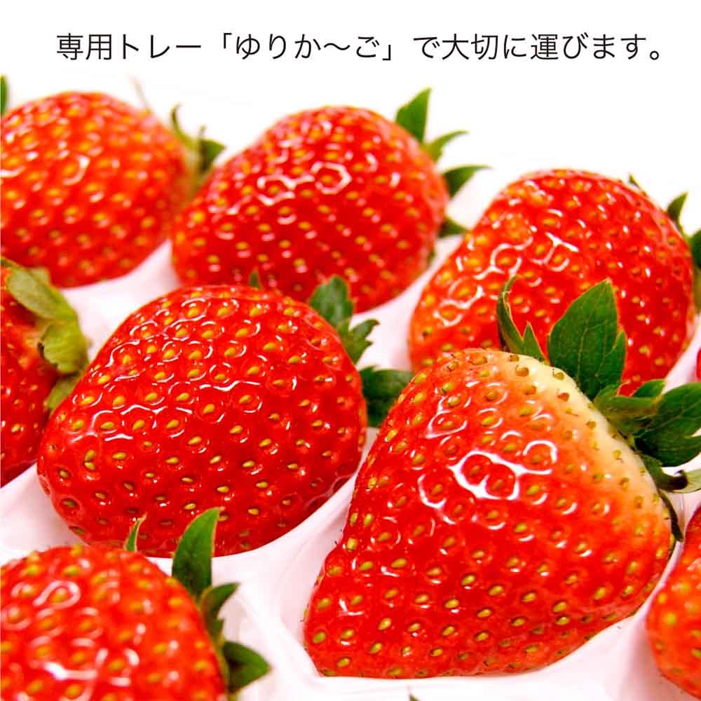 いちご大福(店舗限定商品)