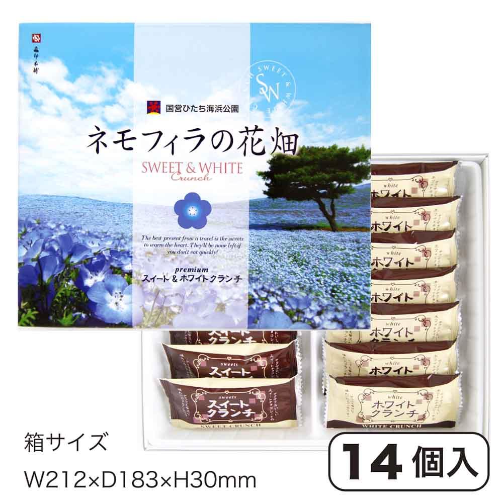 【特別商品】ネモフィラの花畑