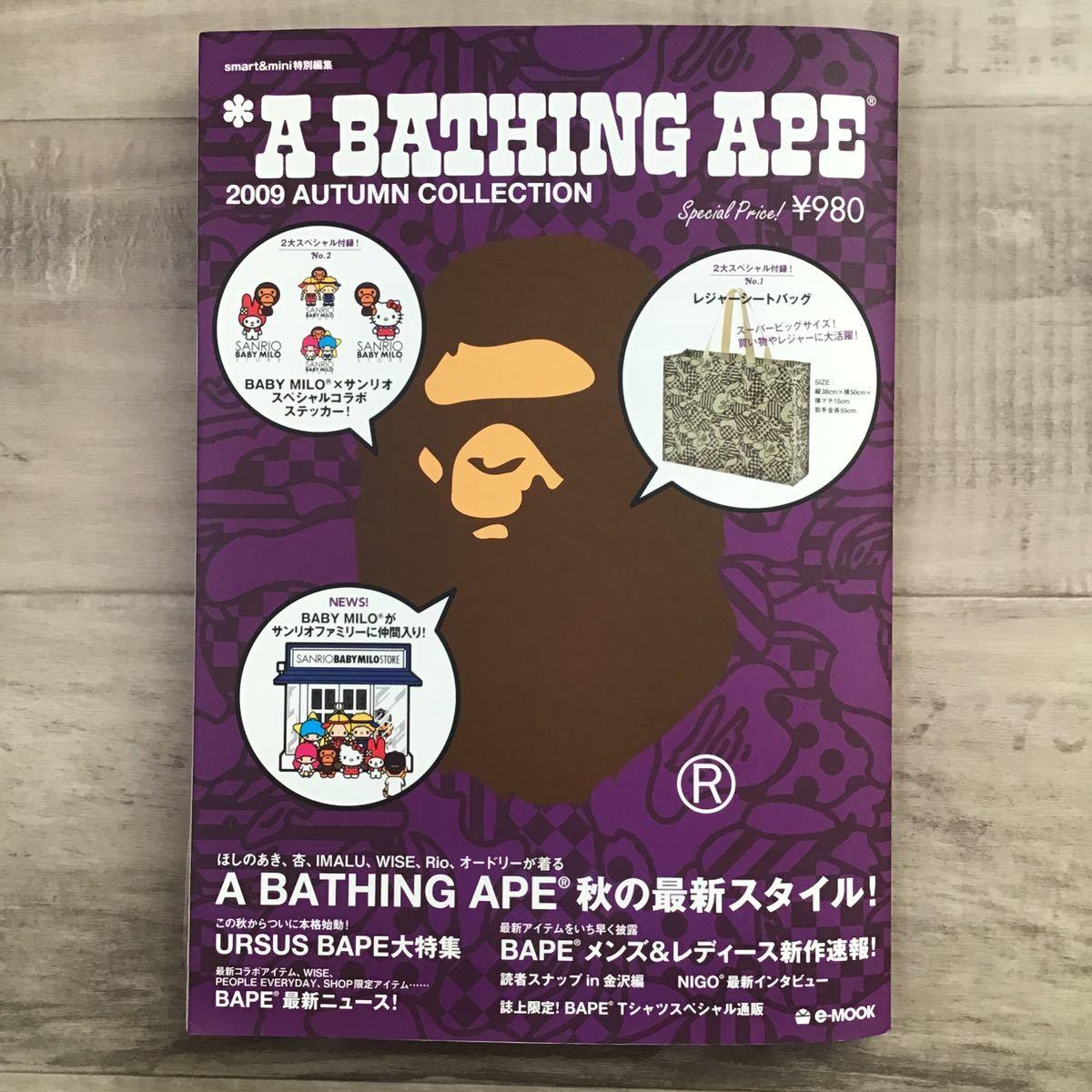 ★付録未開封★ 2009 AUTUMN ムック本 a bathing ape bape cookie camo mook エイプ ベイプ 付録 本 レジャーシートバッグ nigo