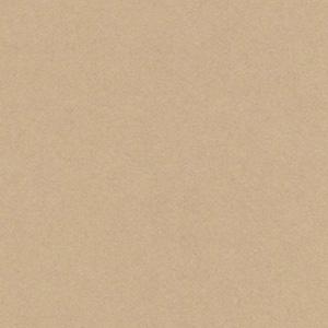 片艶クラフトペーパー(未晒) / 45kg(0.06mm)