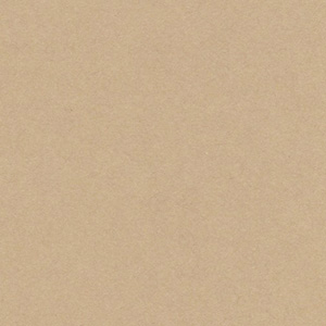 片艶クラフトペーパー(未晒) / 90kg(0.11mm)