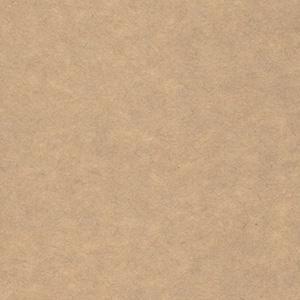 クラフトペーパーデュプレ / 124kg(0.16mm)