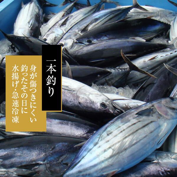 近海物 一本釣り 花かつお 50g / 鰹節 かつお節   【送料別】