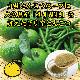 ゆず胡椒とんこつラーメン 【2食入り 小林製麺 大分県産 ゆずこしょう ピリ辛 お取り寄せ とんこつスープ 福岡県産ラー麦 セット】