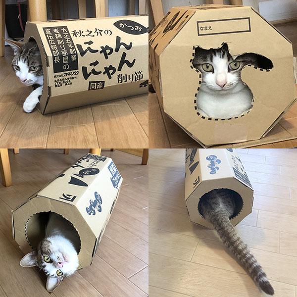 秋之介のにゃんにゃん削り節(猫用)