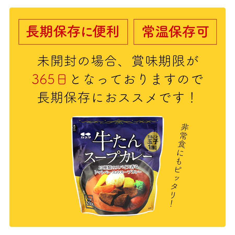牛タン スープカレー 250g×12袋 12人前 レトルト 食品 湯煎 非常食 送料無料●牛たんスープカレー250g×12袋●k-07
