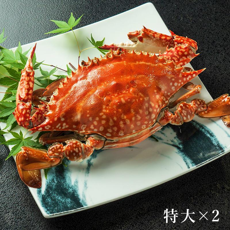 [お得!]竹崎カニ 梅セット(特大×2杯)