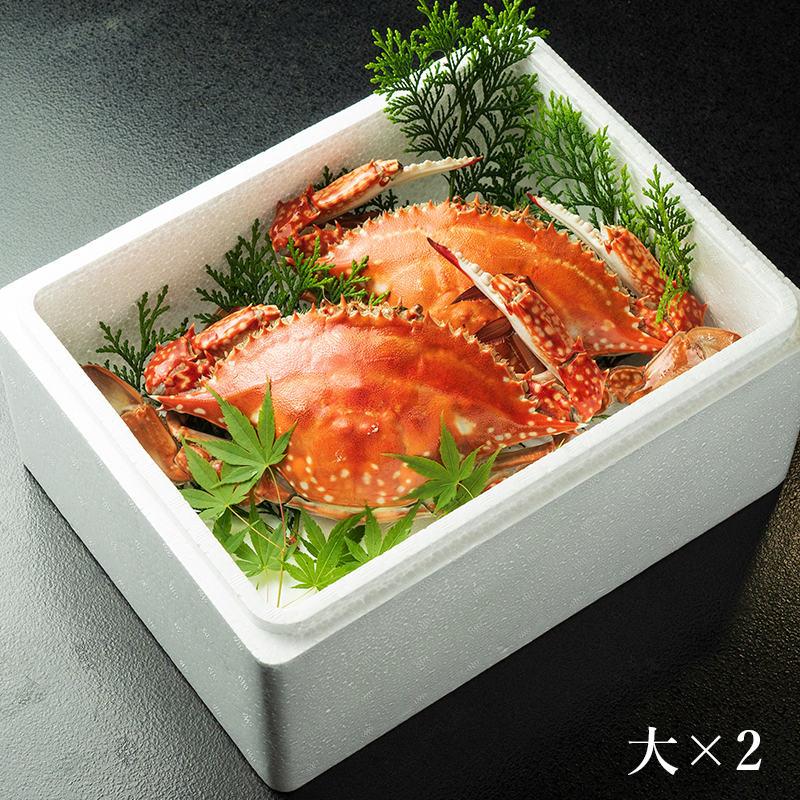 竹崎カニ 大セット(大×2杯)