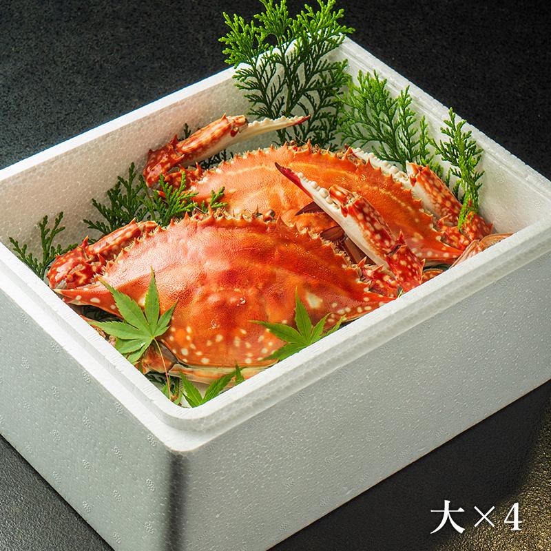 竹崎カニ 大セット(大×4杯)