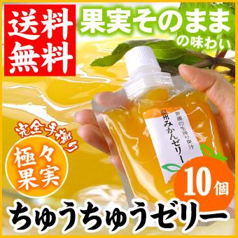 極々果実ちゅうちゅうゼリー10個セット【送料無料】