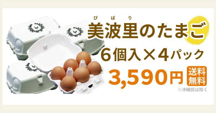 【自然農法】ぜひとも生で味わって頂きたい美味しさ!美波里のたまご 6個×4パック 北海道根室産 の びばりの卵(玉子)合計24個【送料無料】