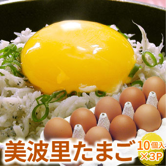 【自然農法】ぜひとも生で味わって頂きたい美味しさ!美波里のたまご 10個×3パック 北海道根室産 の びばりの卵(玉子)合計30個【送料無料】