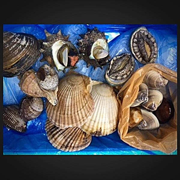 【むさしの水産】私は貝が喰べたい!セット